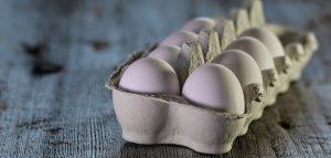 huevo bueno o malo