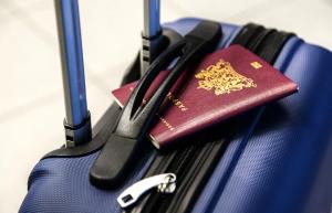 Buscar numero de pasaporte de forma online